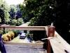 15-treescape-from-second-floor-terrace-september-18-02